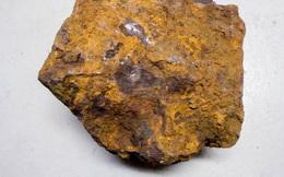 Đào cục sắt trong vườn, 31 năm sau mới biết là báu vật ngoài hành tinh