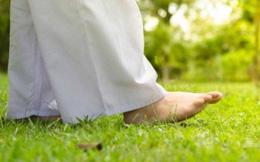 """10 lợi ích tuyệt vời rất """"đáng giá"""" của một kiểu đi bộ có thể thay đổi sức khỏe tổng thể"""