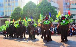 Tạm dừng dịch vụ voi chở khách sau khi 3 du khách cưỡi voi bị nạn