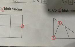 Bài toán đếm hình lớp 1 đơn giản khiến phụ huynh nhiệt tình tranh cãi, nghe lý giải của học sinh mới thấy sai sai