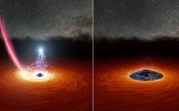 Lần đầu tiên trong lịch sử, các nhà thiên văn học quan sát được 1 hố đen vừa 'chớp mắt'