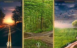 Chọn lấy một bức ảnh thu hút bạn nhất để biết con đường hiện tại bạn đang đi đã đúng hướng hay chưa