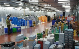 Mất 4 ngày đêm kiểm kê và 34 container chứa hàng niêm phong trong kho hàng lậu khủng ở Lào Cai