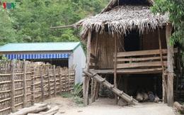 """Vụ chuồng bò """"hạng sang"""" hơn 230 triệu đồng: Chuồng thì xây đẹp, to nhưng nhà cửa còn khó khăn quá!"""