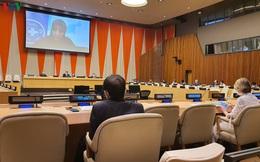 Hội đồng Bảo an họp về tình hình Yemen