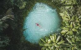 20 bức ảnh tuyệt đẹp về màu xanh lá cây giúp bạn thư giãn ngay lập tức
