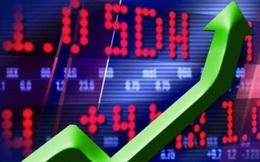 Một cổ phiếu bất ngờ tăng gấp 3 lần chỉ sau 9 phiên giao dịch