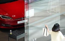 'Cơn sốt' Tesla tràn vào 'thánh địa ô tô' Hàn Quốc
