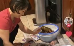 """Bước vào bếp dõng dạc hỏi mẹ """"hôm nay ăn gì"""", chàng trai có ngay đoạn clip triệu views trên TikTok khiến dân mạng bật cười thành tiếng"""