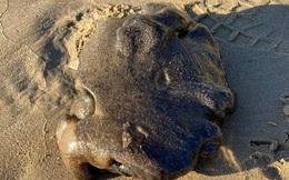 Người phụ nữ nhặt được vật thể lạ trôi dạt vào bờ biển, dân mạng nói cô sắp có tiền tỷ đến nơi