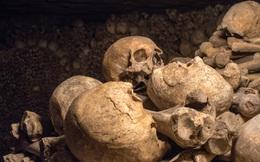 Khai quật mật thất niên đại 4.300 năm, nhà khảo cổ phát hiện 80 hộp sọ người