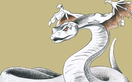 Cứu 1 con rắn rồi đem về nhà nuôi, người đàn ông không ngờ có ngày mất mạng: Lý do thật sự phía sau khiến nhiều người giật mình