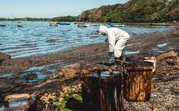 """Hàng nghìn tấn dầu đổ ra biển, """"thiên đường du lịch"""" Mauritius kêu cứu"""