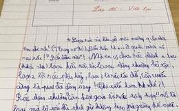 Bài văn khác thường của một cậu bé học lớp 3, cô giáo phê ngay 'lạc đề, viết lại' còn dân mạng ôm bụng cười muốn xỉu
