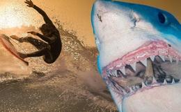 Sau khi cứu sống vợ khỏi con cá mập, chồng nói 1 câu khiến nhiều người phải bất ngờ