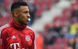Bayern Munich vs Lyon: 'Derby' nước Pháp