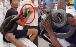 Người đàn ông bị rắn cắn, quấn chặt vào cánh tay - hình ảnh ở phòng cấp cứu khiến tất cả hoảng sợ