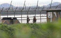 Sống ở Hàn Quốc không lâu, công dân Triều Tiên đào tẩu lại về nước
