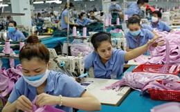 WB chỉ ra yếu tố sẽ chi phối trạng thái bình thường mới tại Việt Nam