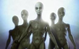 Sẽ tìm thấy sự sống thông minh ngoài hành tinh trong vài thập kỷ tới?