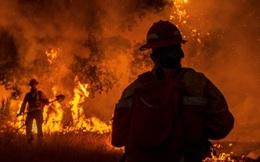 """California cầu cứu vì gần 600 vụ cháy rừng giữa """"bão"""" COVID-19"""