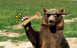 Gấu hối lộ xương hươu cho chó để vào nhà dân bới thùng rác