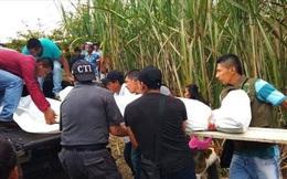 Ba vụ thảm sát trong 24 giờ: Tuần đẫm máu tại Colombia