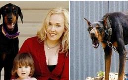 Thấy chú chó mới nuôi hung dữ ném con gái ra xa, người mẹ hoảng sợ tột độ nhưng khi biết sự tình liền mang ơn con vật suốt đời