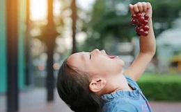 Đưa cho con ăn vài quả nho hái ở ngoài vườn, bà mẹ đau đớn nhìn 2 con tử vong vì lý do đáng sợ