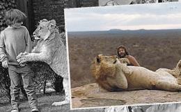 Những bức ảnh khó tin và câu chuyện về chú sư tử được nuôi như thú cưng trước khi trả về tự nhiên