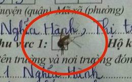 """Lại thêm 1 màn viết hồ sơ """"đi vào thùng rác"""" khiến ai thấy cũng tội nhưng thôi cũng kệ: Thí sinh không sai, con muỗi sai!"""