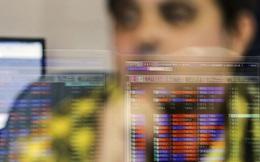 Công ty không hề có doanh thu nhưng cổ phiếu này đã tăng 4.300% kể từ đầu năm đến nay
