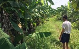 Vụ bé gái ở Hà Nội bị hãm hiếp trong vườn chuối: Hai cháu bé chạy lại cổng trang trại la hét