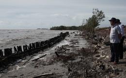 Mùa mưa bão, đê biển Tây Cà Mau đặt trong tình huống khẩn cấp