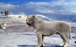 """Hồi sinh xác ướp sư tử 50.000 năm tuổi """"ngủ quên"""" dưới lớp băng vĩnh cửu"""