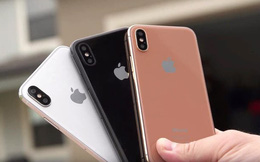 """iPhone giảm giá tới 5 triệu đồng, phiên bản """"quốc dân"""" về mức bình dân nhất tháng 8"""