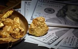 Forbes: Tại sao vàng đang là kênh đầu tư tốt nhất hiện nay?