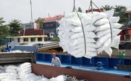 Việt Nam xuất gần 4 triệu tấn gạo đi đâu trong 7 tháng đầu năm?