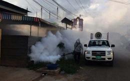 Campuchia: Dịch sốt Chikungunya lan ra 15 tỉnh, khoảng 1.700 ca mắc