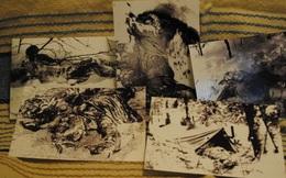 Sự kiện đèo Dyatlov: Tai nạn leo núi kỳ lạ nhất trong lịch sử nhân loại (Phần 6)