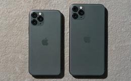 Số người quan tâm đến iPhone 11 bất ngờ giảm mạnh, dồn sự quan tâm đến iPhone 12 sắp ra mắt