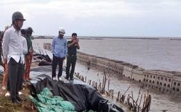 Dự án nâng cấp đê biển Tây ở Cà Mau: Lộ nhiều sai phạm