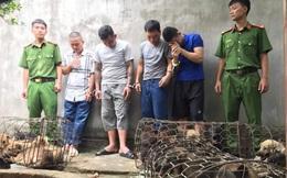 """Nhóm """"cẩu tặc"""" mang theo súng kiếm đi khắp tỉnh Nghệ An, mỗi đêm trộm nửa tấn chó"""