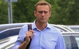 Navalny bình phục, quyết trở về Nga sau nghi án trúng độc Novichok