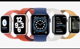 Apple Watch phiên bản rẻ nhất vừa ra mắt khi về Việt Nam được bán với giá bao nhiêu?