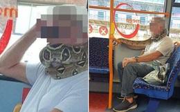 Hành khách kinh hãi chứng kiến người đàn ông bị con trăn quấn quanh cổ trên xe bus, tìm hiểu nguyên nhân lại càng bất bình hơn