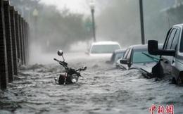 Thảm cảnh nước ngập thành sông tại Mỹ sau khi bị bão Sally quét qua