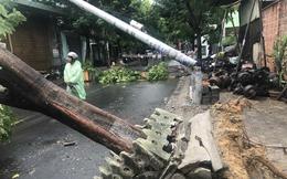 """Mạng xã hội lan truyền tin cột điện """"không có thép"""" gãy trong bão số 5, ngành điện Đà Nẵng nói gì?"""
