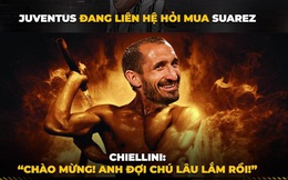 """Biếm họa 24h: Chiellini chờ ngày """"gặp lại"""" Suarez"""