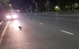 Bí ẩn hiện tượng chim chết hàng loạt tại thành phố Nga